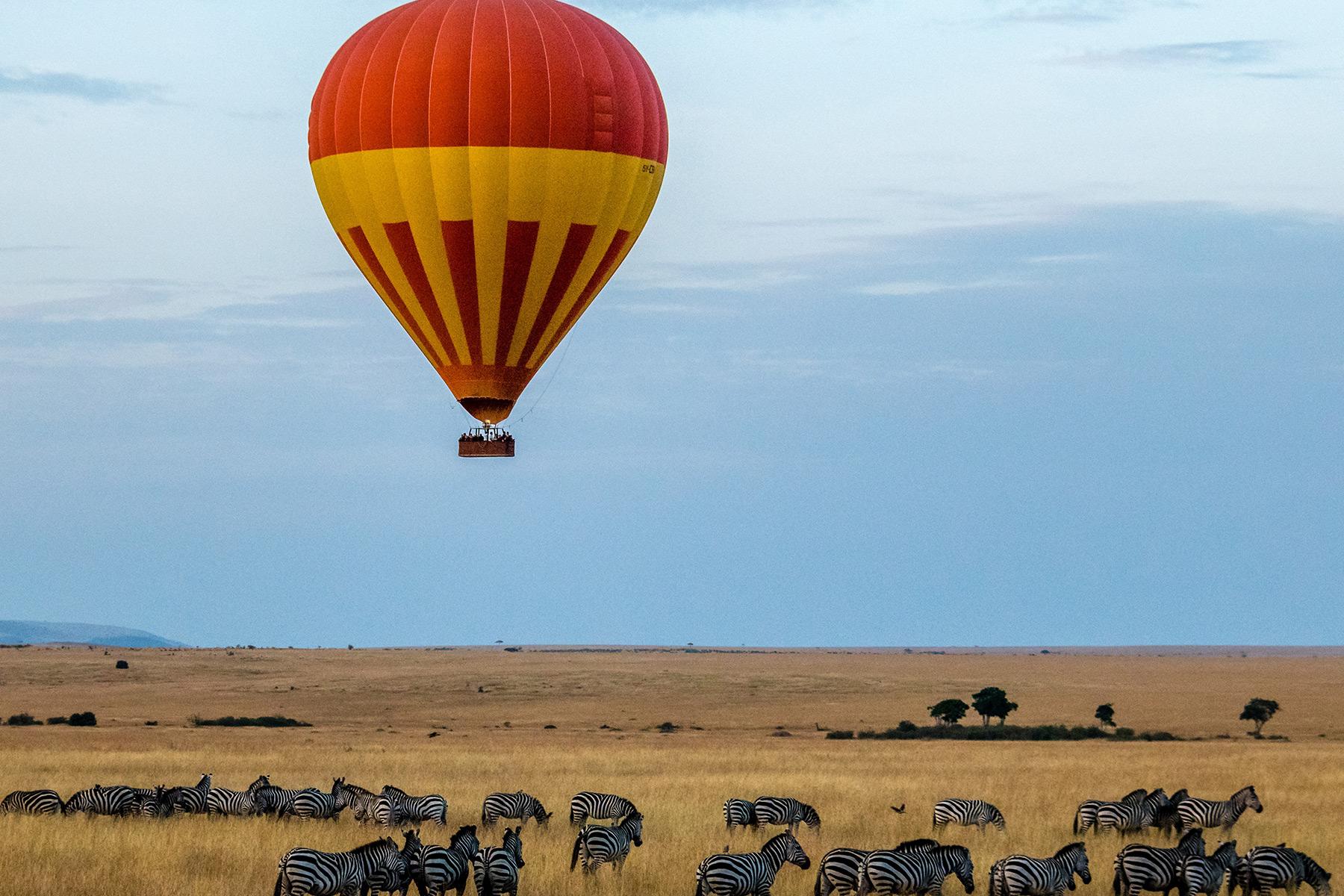 Luxury Safari & Cape Town Tour 2