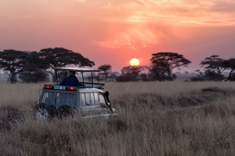 Luxury Safari & Cape Town Tour 5