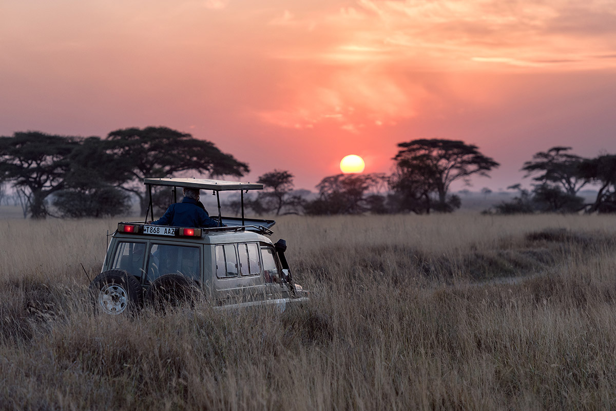 Luxury Safari Sunset over the savannah